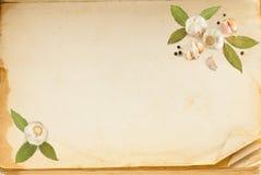 gammala sidakryddor för bok Royaltyfri Foto