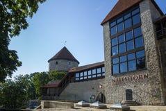 gammala tallinn torn Royaltyfri Foto
