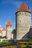 gammala tallinn torn Arkivbilder