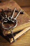 Gammala tangenter på en gammal bok Arkivbild