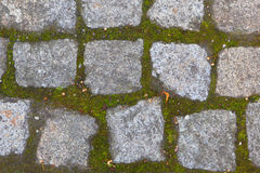 Gammala tegelstenar Bakgrund av stenar Royaltyfri Fotografi