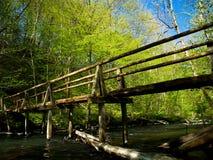 gammala träträn för bro Royaltyfri Foto