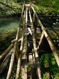 gammala träträn för bro Royaltyfria Bilder