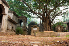 Gammala trees och gravestones i kyrkogård arkivfoto