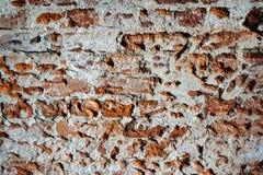 gammala väggar för tegelsten Royaltyfria Foton