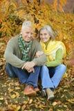 Gammalare par i parken Arkivfoton