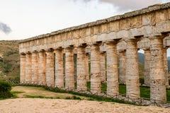 Gammalgrekiskakolonner av templet i Segesta, Sicilien royaltyfri fotografi