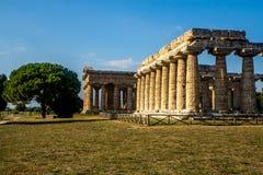 Gammalgrekiskatempel i Paestum Italien Fotografering för Bildbyråer