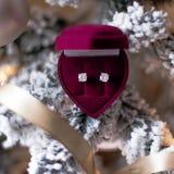 Gammalmodig jul - feriegåva för henne arkivfoton