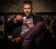 Gammalmodigt skäggigt mansammanträde i bekväm lädersoffa med koppen kaffe som isoleras på grå färger arkivbilder