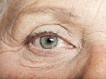 Gammalt öga Fotografering för Bildbyråer