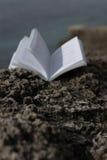 Gammalt öppna boken på kust Fotografering för Bildbyråer