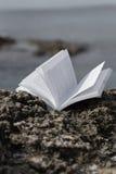 Gammalt öppna boken på kust Arkivfoto