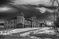 gammalt övergivet slott Royaltyfri Fotografi