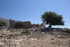 gammalt abadoned slott Royaltyfria Foton