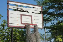 Gammalt basketbeslag Fotografering för Bildbyråer