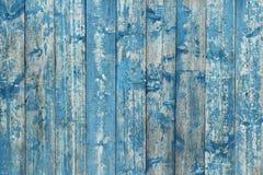 Gammalt bräde som målas med blåttmålarfärg Royaltyfri Bild