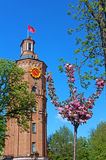 Gammalt brandtorn med klockan (1911) och det sakura trädet, Vinnytsia, Ukraina Arkivbilder