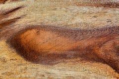 Gammalt brunt trä Arkivbilder