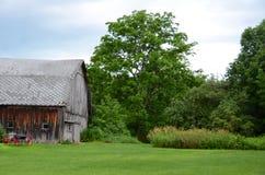 Gammalt cederträ sid landsladugården med den röda hjulvagnen framme av Arkivbilder
