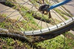Gammalt cykelgummihjul Fotografering för Bildbyråer