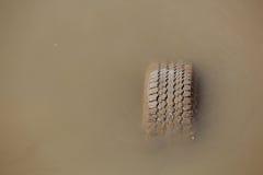 Gammalt däck som sjunker i vattnet Arkivbild