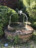 Gammalt damm i en trädgård arkivfoto