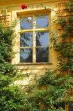 Gammalt europeiskt fönster Arkivbilder