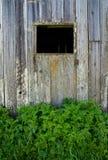 gammalt fönster för ladugård Arkivfoto