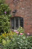 Gammalt fönster med blomsterrabatten fotografering för bildbyråer
