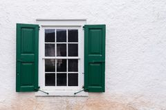 Gammalt fönster med gröna slutare royaltyfria foton