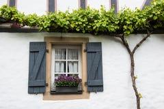 Gammalt fönster med slutare, blommakorgen och vinrankan, Tyskland Arkivfoto