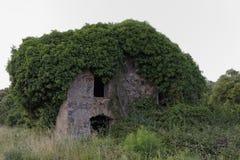 Gammalt fördärva huset i den Moriani plagen, San Nicolao, Korsika, Frankrike Arkivfoto