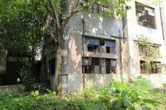 Gammalt fabrikshus i den redtory idérika trädgården, guangzhou, porslin Arkivfoto