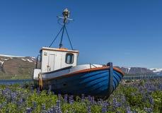 Gammalt fartyg i Thingeyri Island royaltyfri fotografi