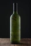 Gammalt flaskvin arkivbild