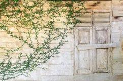 gammalt fönsterträ Royaltyfria Bilder