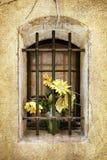 Gammalt gallerförsett fönster för Grunge med blommor Arkivfoto