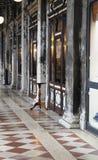 Gammalt galleri i Venedig Royaltyfri Bild