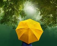 Gammalt gult paraply i skog på soluppgång, vibrerande begrepp Arkivbild