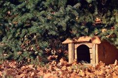 Gammalt hundhus som omges av gulingsidor i skogen Arkivbilder