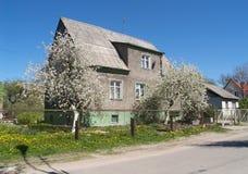 Gammalt hus av den tyska konstruktionen med de blomstra Apple-träden Kaliningrad Royaltyfri Fotografi