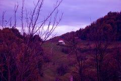GAMMALT HUS: Ensamt hus i skogen Arkivfoto