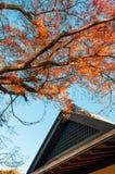 Gammalt hus i bonsaibyn, Omiya, Saitama, Japan Royaltyfri Fotografi