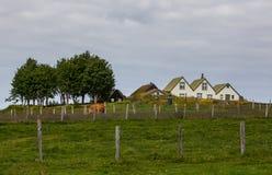 Gammalt hus i Island Fotografering för Bildbyråer