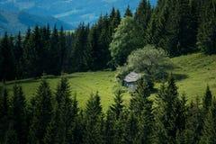 Gammalt hus på bergfält Arkivfoto