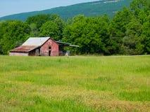 Gammalt hus på det ljust - grönt gräs Royaltyfri Foto