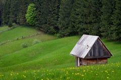Gammalt hus på ett grönt fält Fotografering för Bildbyråer