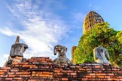 Gammalt huvudlöst brutet för Buddhastaty i Wat Chaiwatthanaram, Ayutthaya, Thailand Arkivbilder