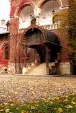 gammalt ingångshus Royaltyfri Fotografi